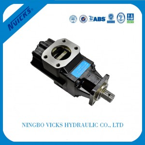 T6GCC Series Doppel Pump